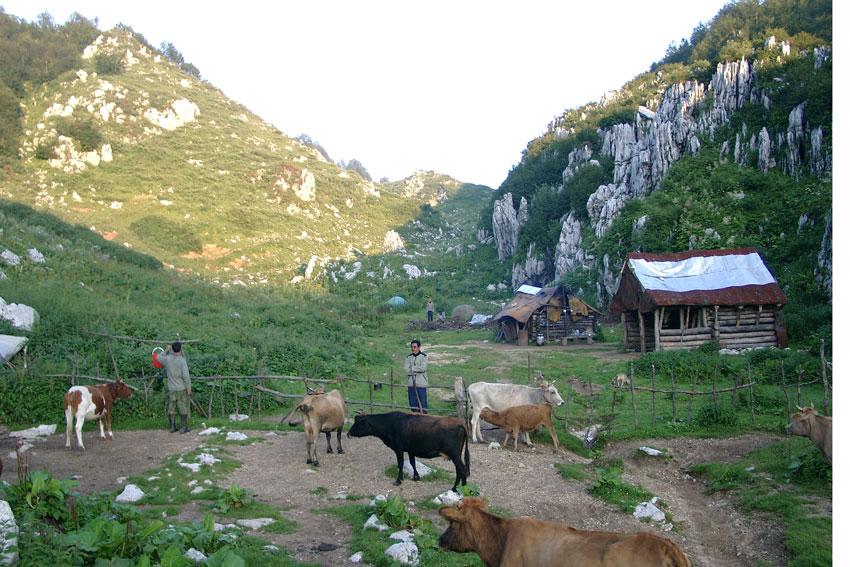 Горы Абхазии