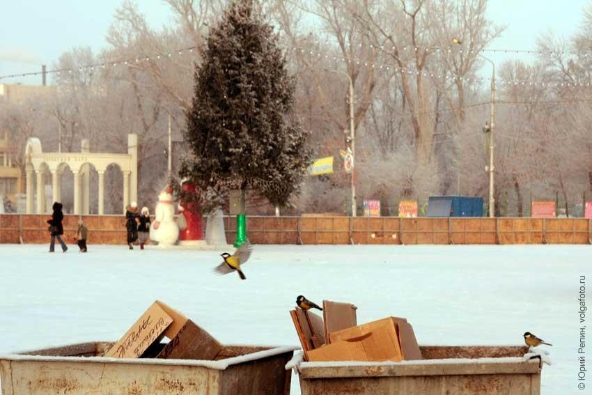 Зимняя площадь Ленина