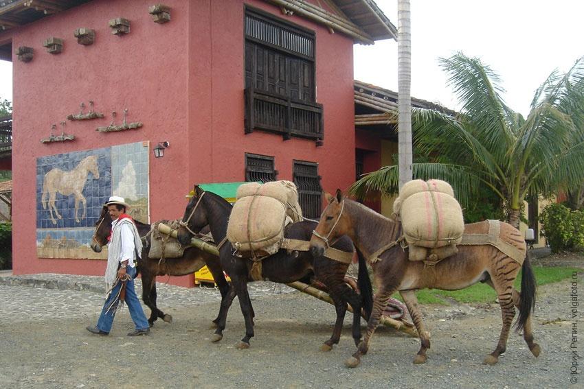 Родео в Колумбии