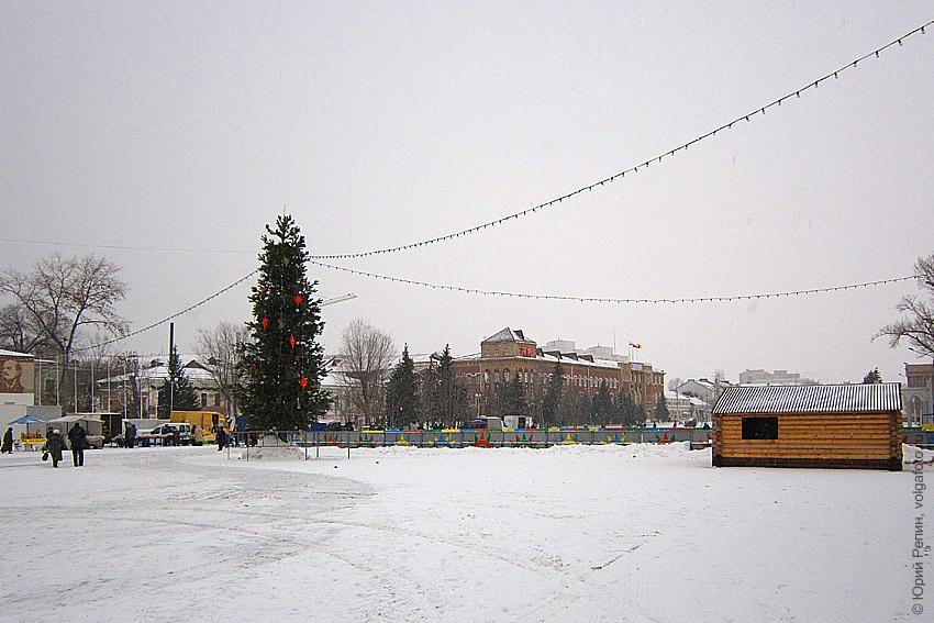 Ёлки в городе