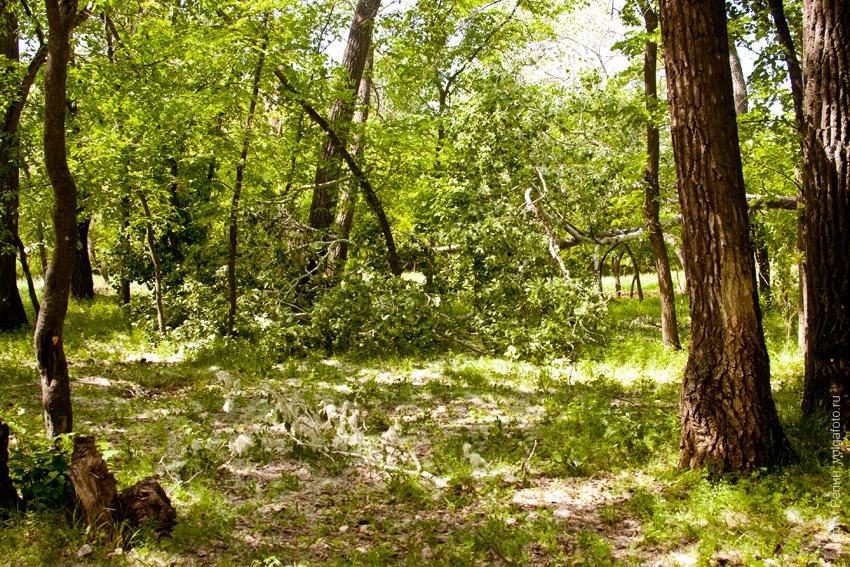 Отдых на озере Сазанка