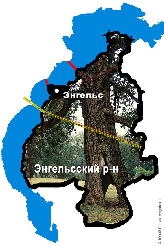 Остров Осокорье (Осокори)
